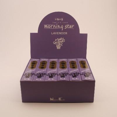 Lavendel Morning Star 50st