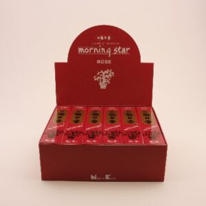 Rose Morning Star 50st